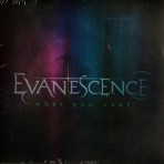 CD – EVANESCENCE – WHAT YOU WANT