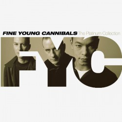 CD – FINE YOUNG CANNIBALS – THE PLATINUM COLLECTION